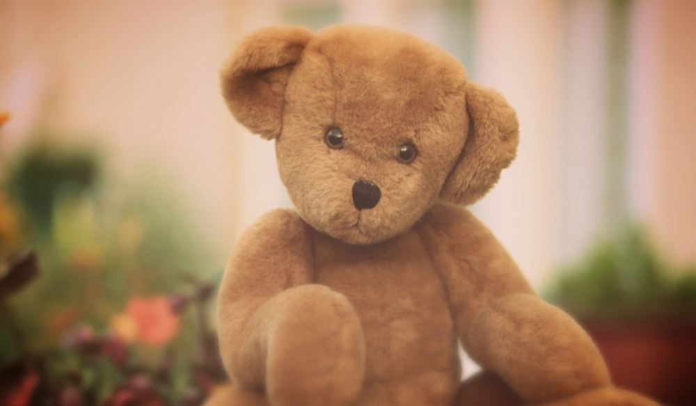 teddy-bear-picnic